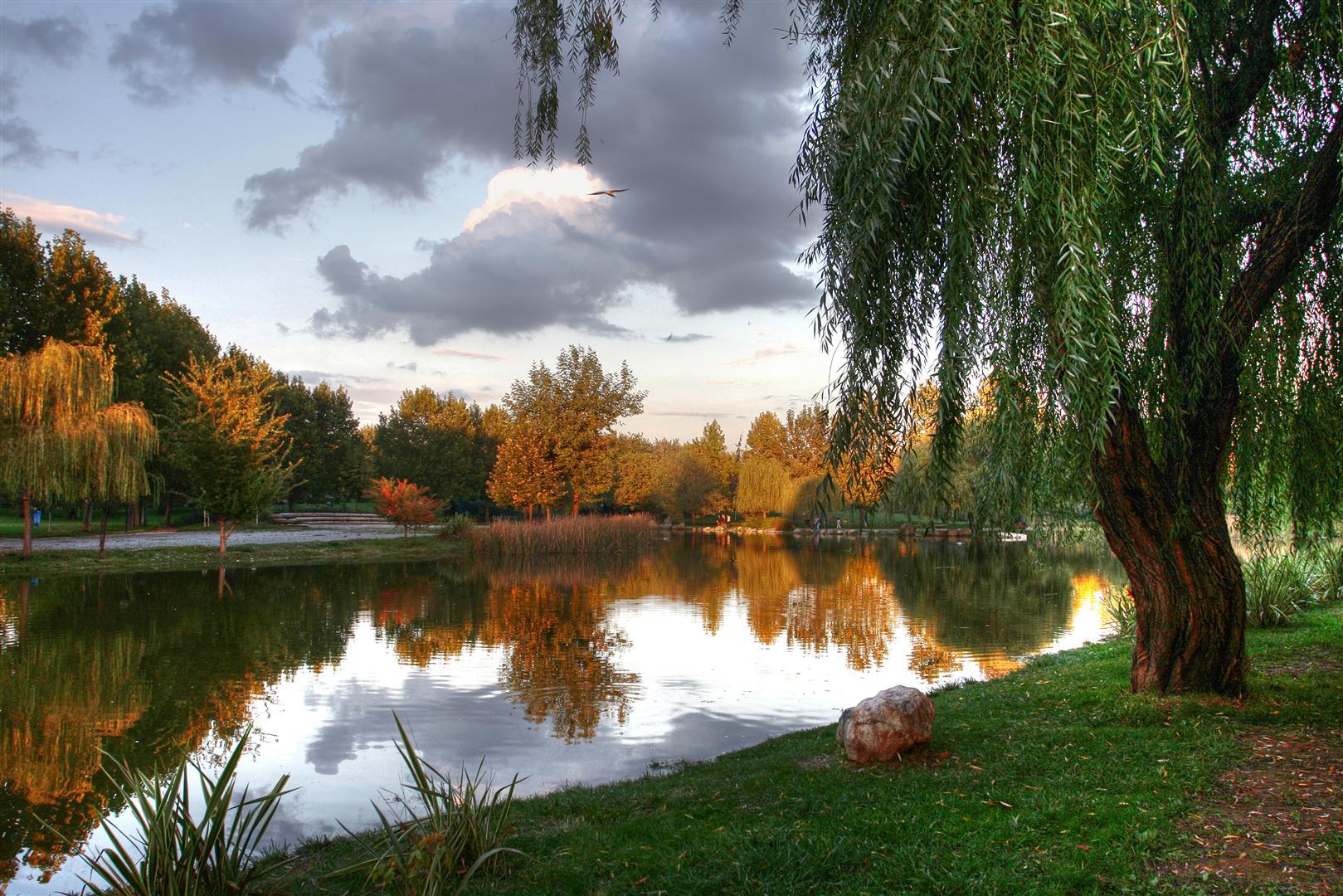 Botanik Park'ın manzarası muhteşem